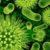 Fermenty i mikroby cz. 1